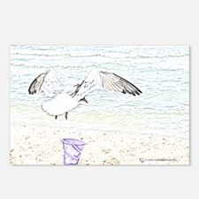 Sea Gull Sketch Postcards (Package of 8)