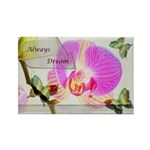 Always Dream Orchid and Butterflies Rectangle Magn
