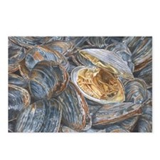 Clams Watercolor Postcards (Package of 8)