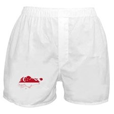 Singapore Flag and Map Boxer Shorts