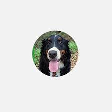 Berner Smile Mini Button