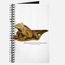 Galapagos Land Iguana Journal
