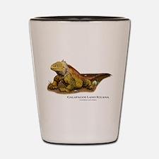 Galapagos Land Iguana Shot Glass