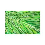 Evergreen Rectangle Magnet