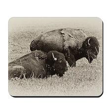 American Buffalo Mousepad