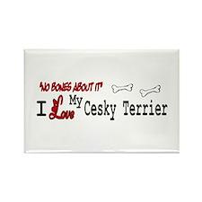 NB_Cesky Terrier Rectangle Magnet (10 pack)