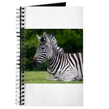 More Than Stripes by Angela Leonetti Journal