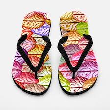 Brainy Flip Flops