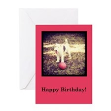 have a ball birthday Greeting Card