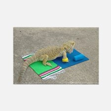 Yoga Spiny the Lizard Rectangle Magnet