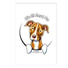Pit Bull IAAM Postcards (Package of 8)