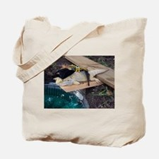Pirate Spiny the Lizard Tote Bag