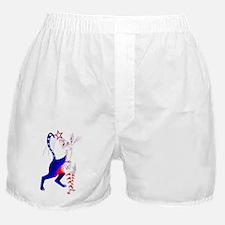 An American Cat Boxer Shorts