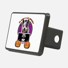 Halloween Just a Lil Spooky Cattle Dog Hitch Cover