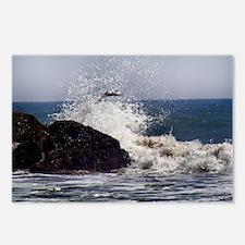 Sea Gull flying a mist crashing waves Postcards (P