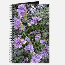 Penstemon Journal