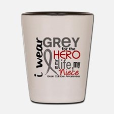 Hero in Life 2 Brain Cancer Shot Glass