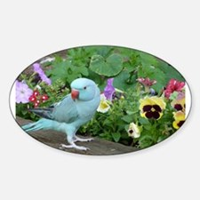 Indian Ringneck in the Garden Decal