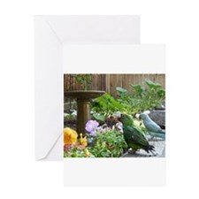 Parrots in the Garden Greeting Card
