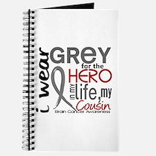 Hero in Life 2 Brain Cancer Journal