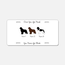 3 Newfs - Black, Brown, Landseer Aluminum License