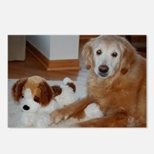Brandy the Golden Retriever Postcards (Package of
