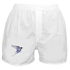 Purple Martin GIFT Boxer Shorts