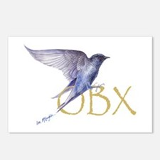 OBX purple martin Postcards (Package of 8)