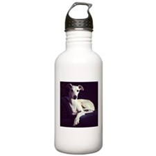 The Whippet Is In Water Bottle