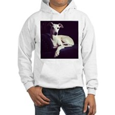 The Whippet Is In Jumper Hoody