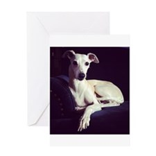 The Whippet Is In Greeting Card