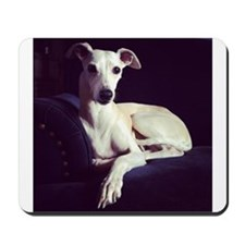 The Whippet Is In Mousepad