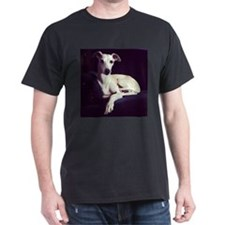 The Whippet Is In T-Shirt