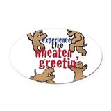 Soft coated wheaten terrier Oval Car Magnets