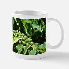 Green Coffee Berries Mug