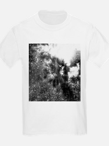 Shining Above In Black T-Shirt