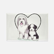Bearded Collies Rectangle Magnet (10 pack)