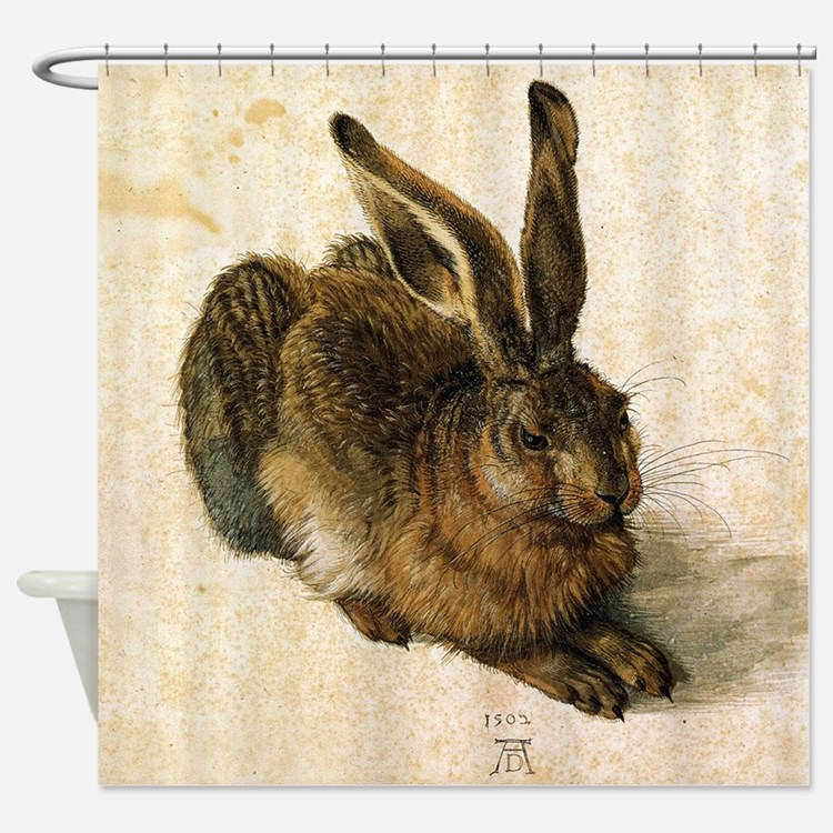 Albrecht Durer Young Hare Shower Curtain
