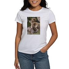 Bighorn Sheep Tee