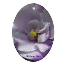 P3120026 #02.JPG Ornament (Oval)