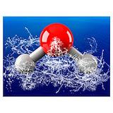 Water molecule Posters