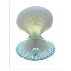 Scallop shell and pearl Poster