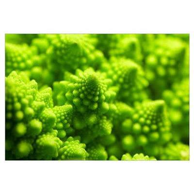 Romanesco cauliflower head Framed Print