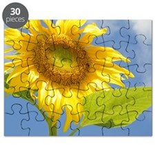 BACKYARD SUNFLOWER Puzzle
