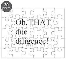 Due Diligence Puzzle