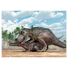 Tyrannosaurus rex dinosaurs mating Poster