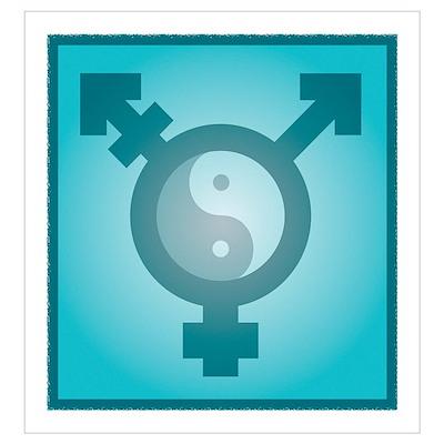 Transgender balance, conceptual artwork Poster