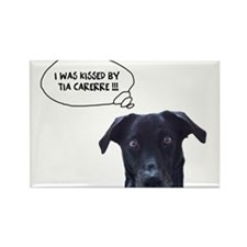 Cute Border collie kiss Rectangle Magnet