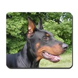 Doberman pinscher Mouse Pads