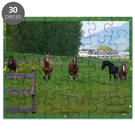 Circle F herd Puzzle